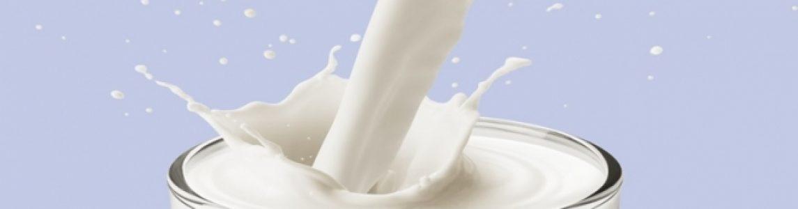 latte paterno